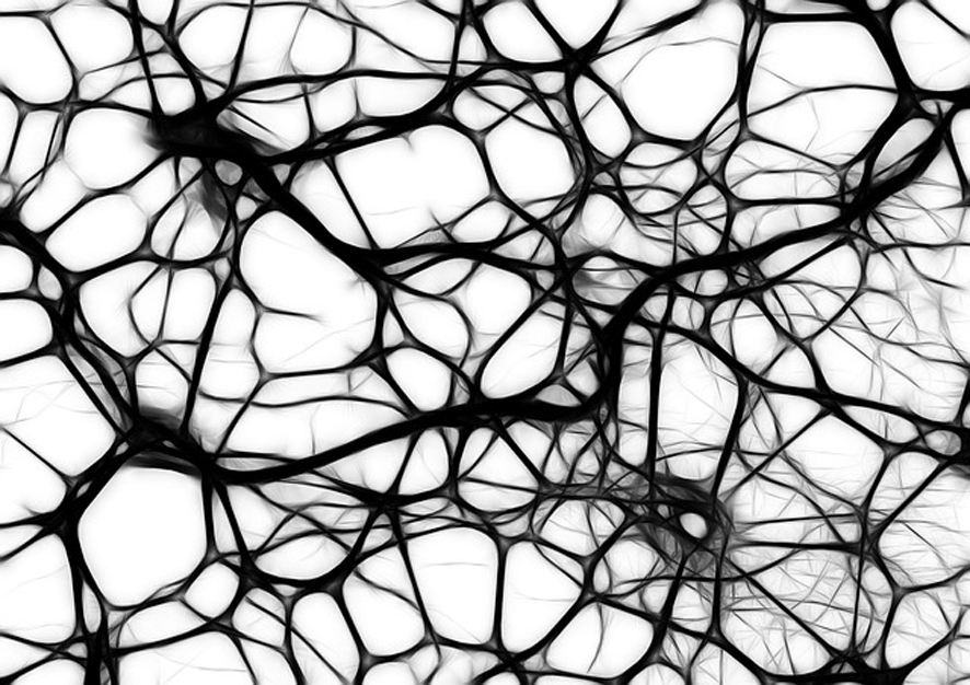 Der weiße Fleck in deinem Kopf – oder wo dein erfülltes Leben wartet